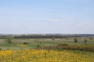 Krajobraz w okolicach Korczewa