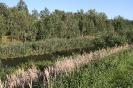 Krajobrazy polskie