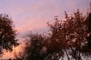 Jesienny wschód słońca